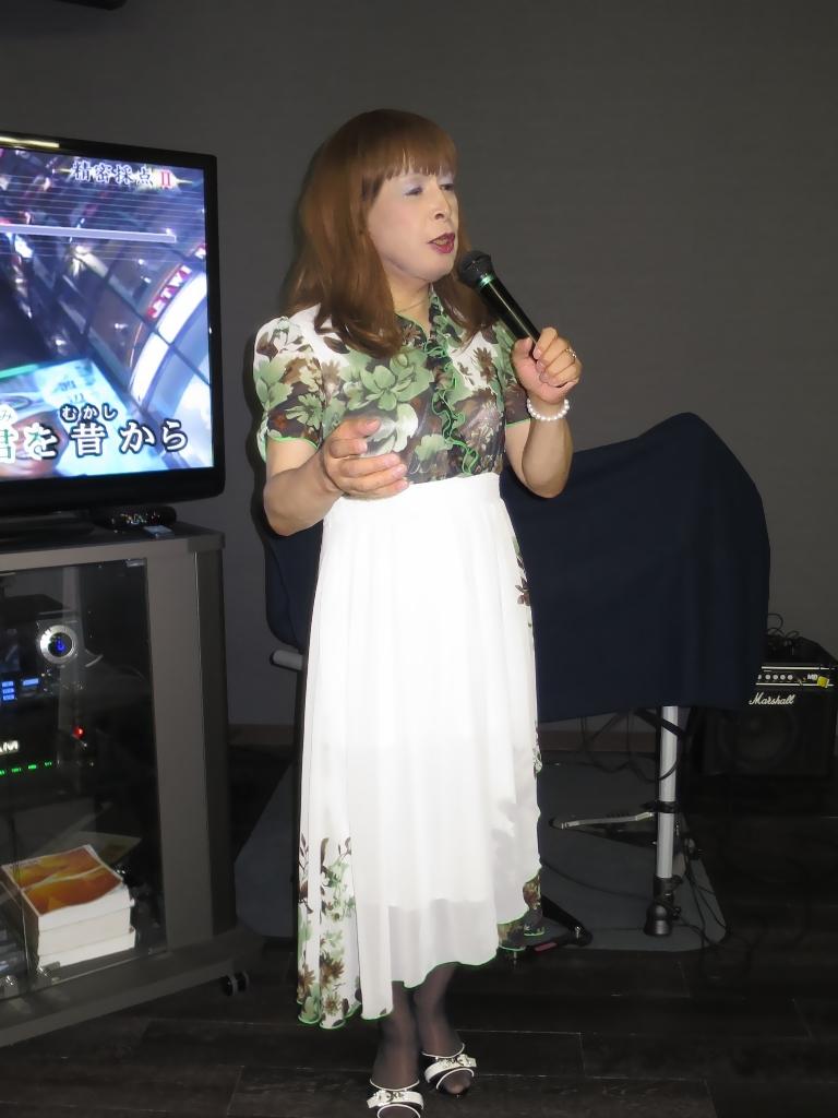 緑花柄シフォンドレスカラオケ(2)