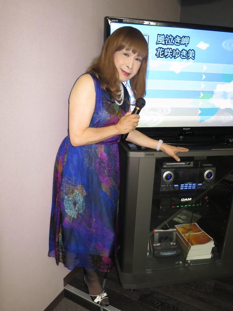 青紫シフォンドレスカラオケ(6)