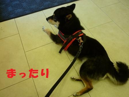 blog9566.jpg