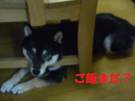 blog9586.jpg