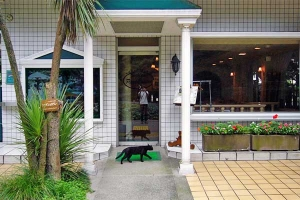 Cat - The Restaurant is Preparing To Open