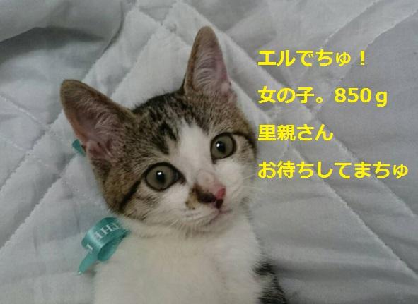 0719067.jpg