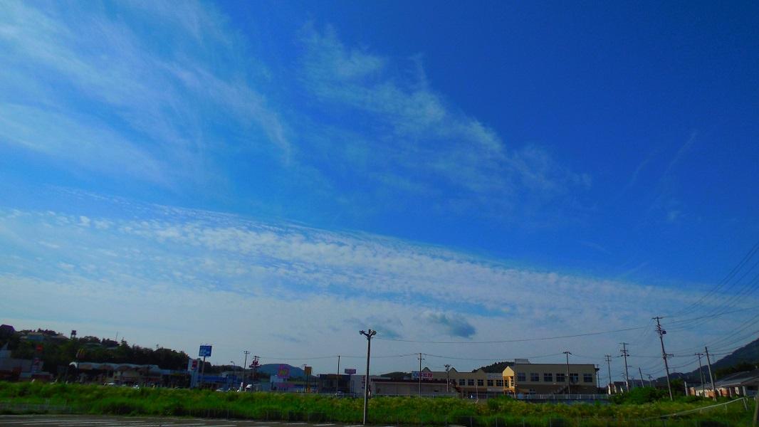 DSCN2719-20150730.jpg