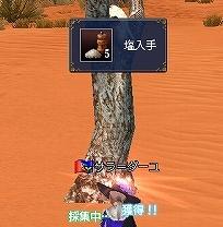 Sahara-3.jpg