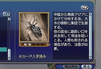 Yokodunasashigame1.jpg