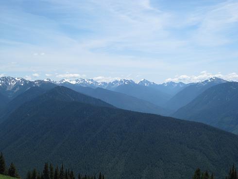 harricane ridge
