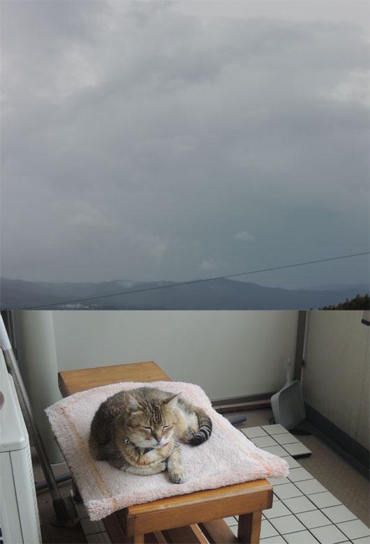 taifun5716.jpg
