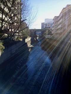 20150131高田馬場散策(その4)
