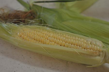 corn2015618.jpg