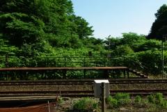 小幌2010 20