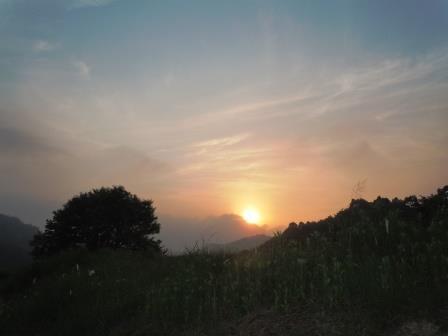 落陽6(2015-06-12)
