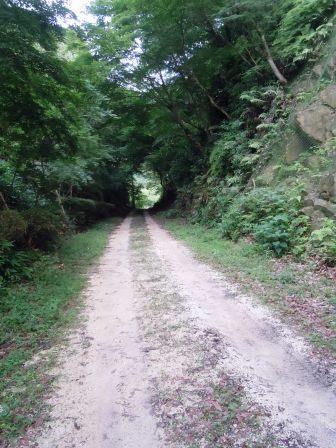 泉山磁石場4(2015-06-09)