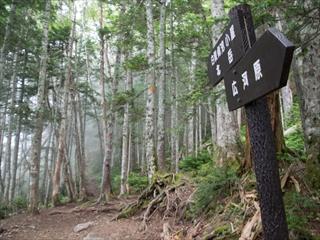 北岳&間ノ岳13 (1 - 1DSC_0014)_R