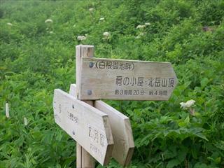 北岳&間ノ岳23 (1 - 1DSC_0024)_R