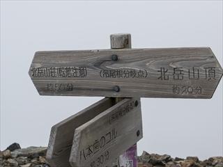 北岳&間ノ岳44 (1 - 1DSC_0062)_R