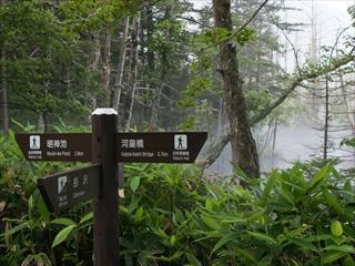 穂高岳08 (1 - 1DSC_0009)_R