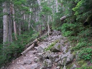 穂高岳11 (1 - 1DSC_0012)_R