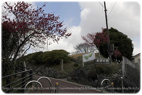 sayomaru14-133.jpg