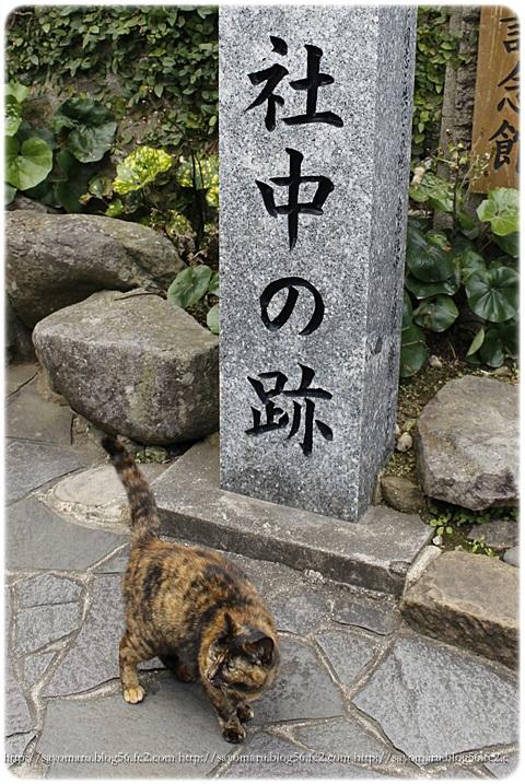 sayomaru14-142.jpg