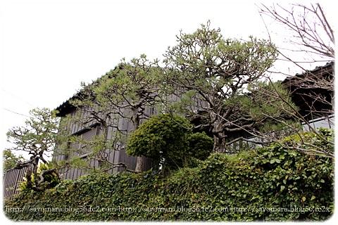 sayomaru14-145.jpg