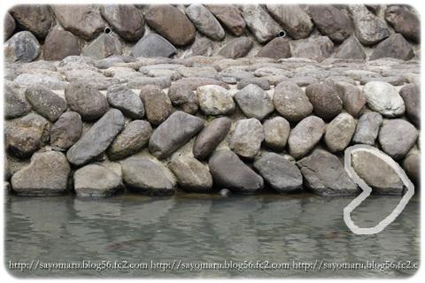 sayomaru14-165.jpg