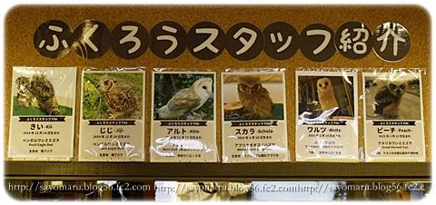 sayomaru14-42.jpg