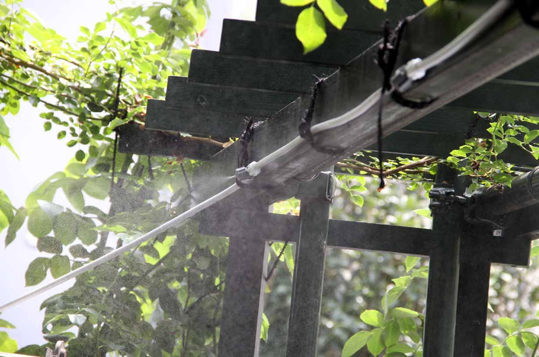 ガーデンミスト(4)