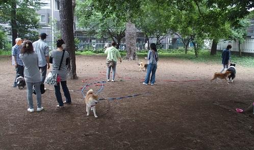 雑木林で遊ぶ人間