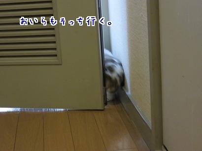 IMG_1646.jpg