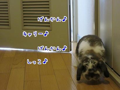IMG_1651.jpg