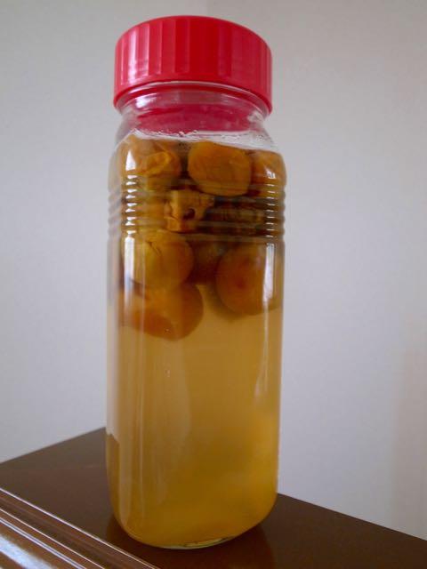 梅シロップ - 1 (2)