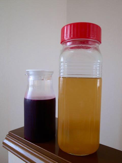 梅シロップ - 1 (3)