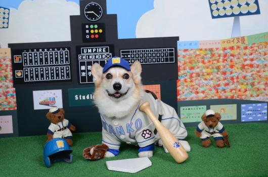 野球選手 カレンダー節ちゃん