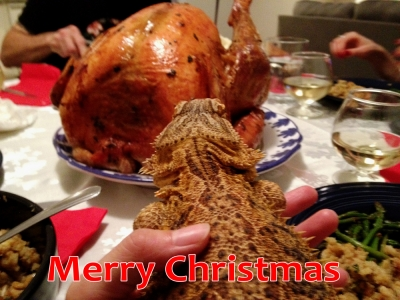 web_christmas_2014.jpg