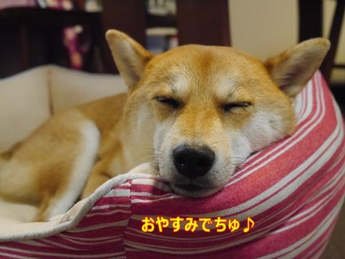 4おやすみなさい