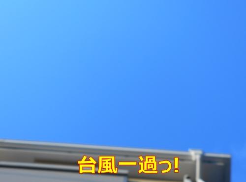 6台風一過