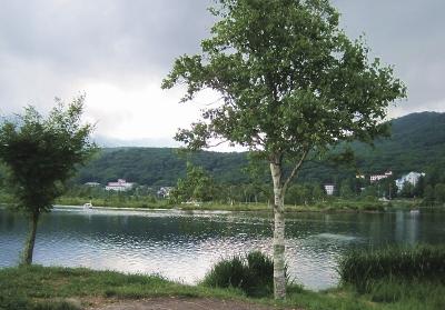 白樺湖-2