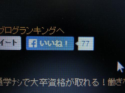 CIMG2275.jpg