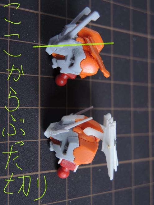 DSCN2416-1.jpg