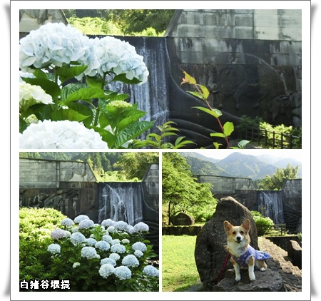 白猪の滝公園2