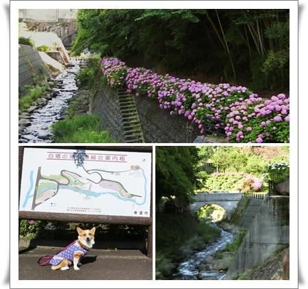 白猪の滝公園1