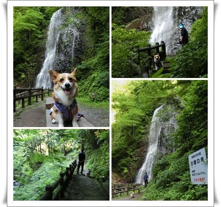 白猪の滝3