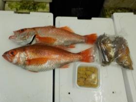 3鮮魚セット2015731