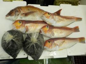 8鮮魚セット2015731