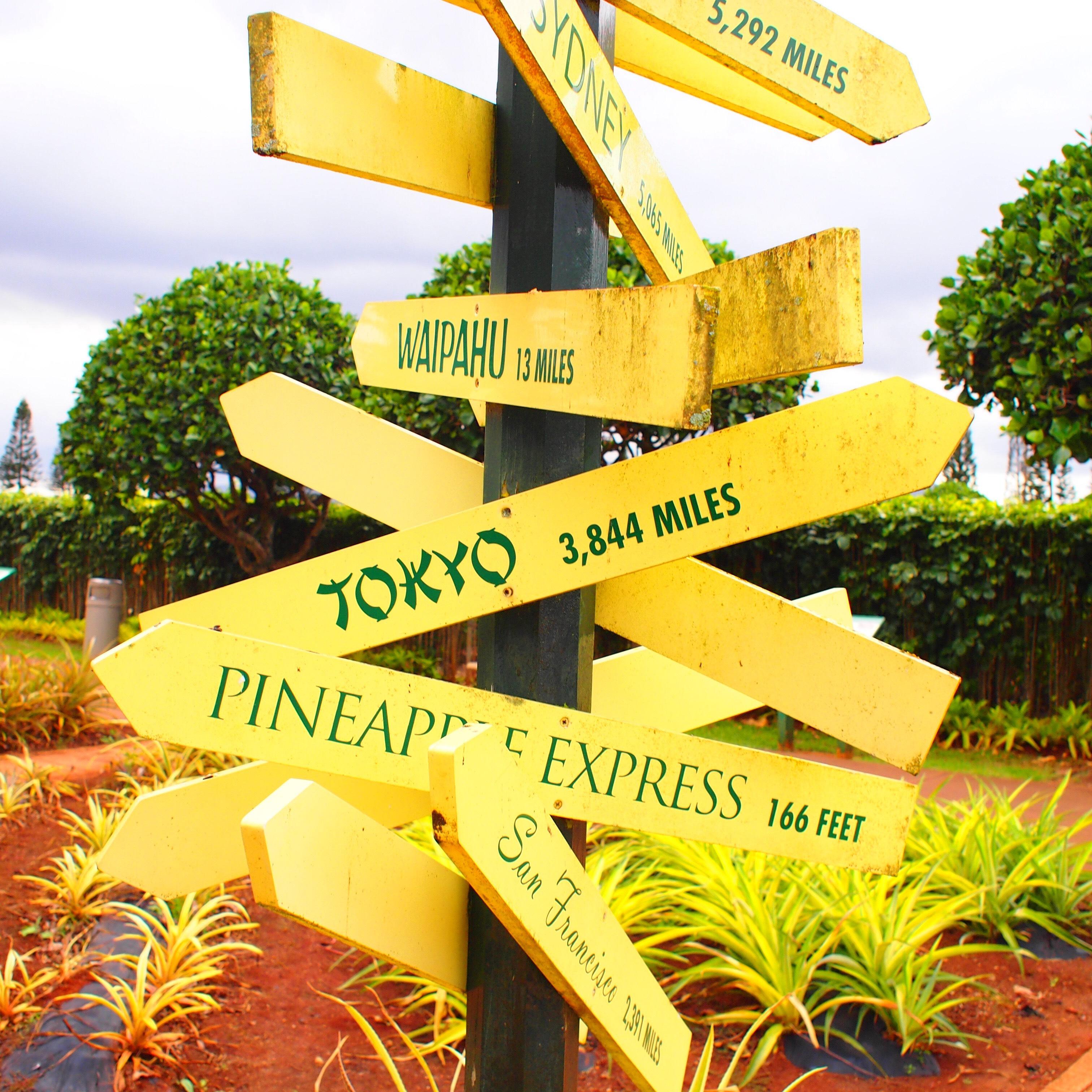 ハワイ  ドールプランテーション