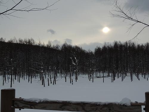 s-日中の白い池。