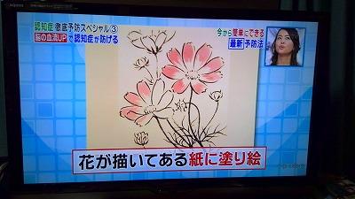 IMG_20150727_205417.jpg