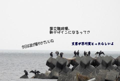2015726u.jpg