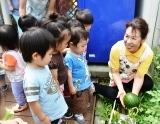 野菜倶楽部 (7)