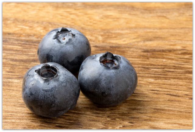 ブルーベリー 写真 フルーツ 果物 ホームページ